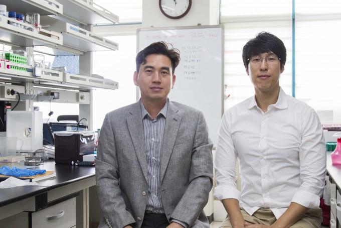 김유천(왼쪽) KAIST 생명화학공학과 교수와 윤채옥 한양대 생명공학과 교수 공동연구팀은 세포의 이온 항상성을 교란하는 원리를 이용해 암 세포 자가사멸을 유도하는 항암제를 개발했다. 제1저자로 이대용(오른쪽) KAIST 생명화학공학과 박사후연구원도 함께 연구에 참여했다.KAIST 제공