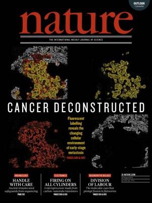 [표지로 읽는 과학] 암 주변세포, 줄기세포처럼 바뀐다