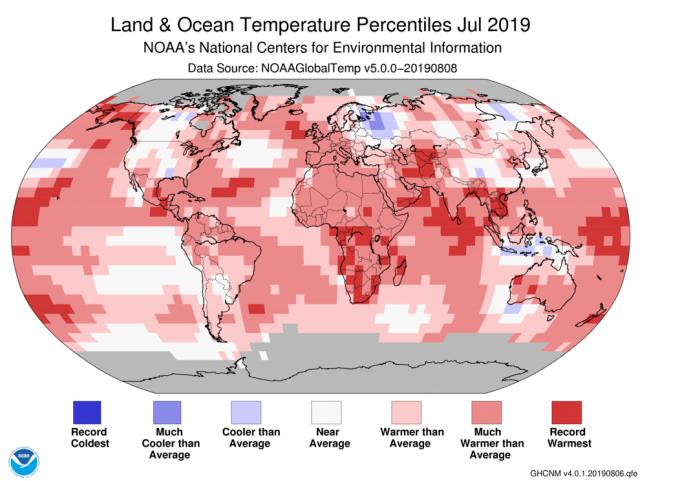 지난 7월이 140년 사이에 지구가 가장 더웠던 달로 기록됐다. 미국해양대기청(NOAA)의 자료에서 붉은색이 짙을수록 평년보다 더웠던 지역이다. 대부분의 지역이 무더웠음을 알 수 있다. NOAA 제공