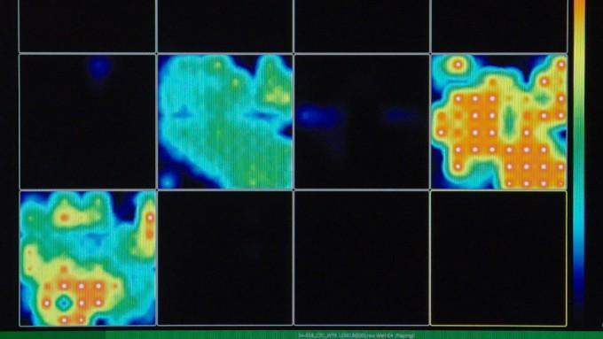 부속물2-연구팀이 줄기세포로 만든 ′미니 뇌′에서 포착한 전기신호. Muotri Lab 제공