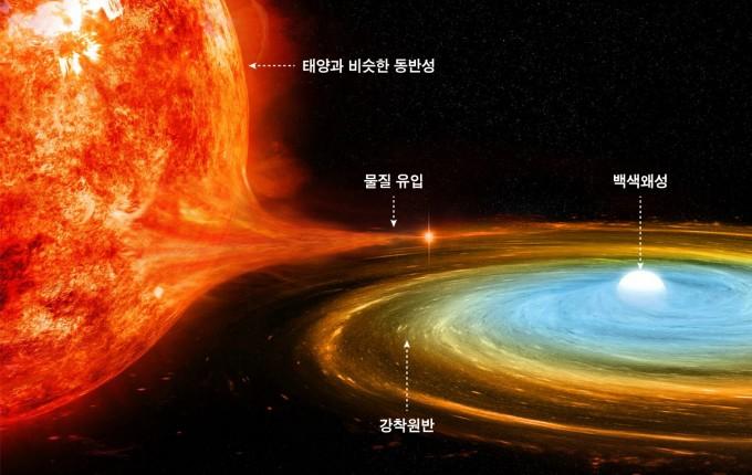 왜소신성이 탄생하는 과정의 상상도다. 먼저 ′죽은′ 별이 작고 어두운 백색왜성이 돼 상대 별의 물질을 빨아들이고, 이 물질로 빛을 내며 급격히 밝아진다. NASA 제공