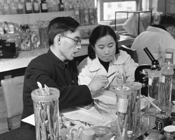 1950년대 투유유가 중국의학연구소에서 실험을 하고 있는 모습. 신화통신/연합뉴스