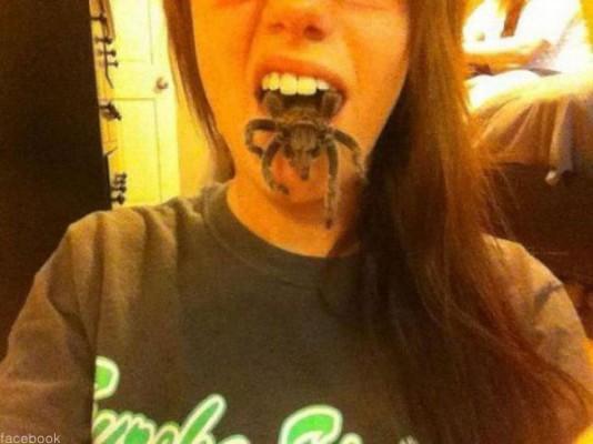사람 입에서 나오는 대왕 거미
