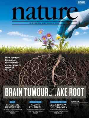 [표지로 읽는 과학] 뇌종양은 뇌 속에 뿌리 내려 성장한다