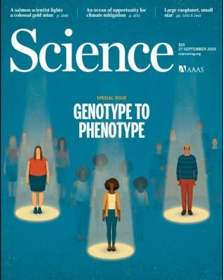 [표지로읽는과학] 인간 건강증진 가져올 '유전자형-표현형' 연구들