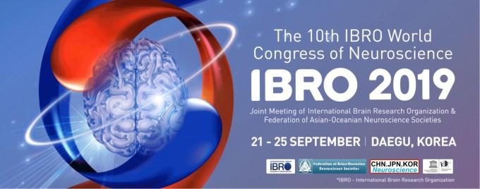 세계뇌신경과학총회(IBRO)조직위원회는 오는 21일부터 25일까지 대구 북구 엑스코에서 총회를 개최한다. IBRO2019 홈페이지 캡쳐.