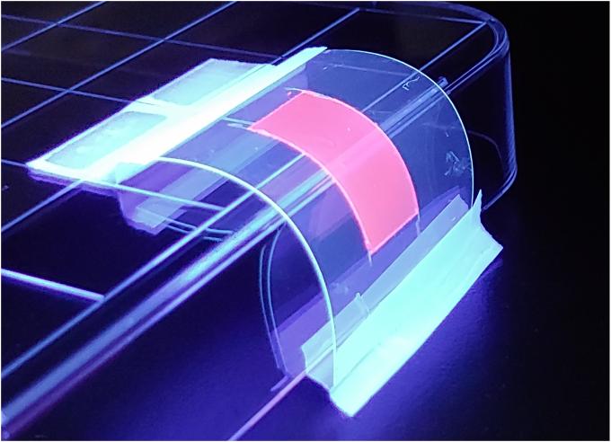 KAIST 연구팀이 개발한 블록공중합 고분자 및 퀀텀닷으로 이뤄진 나노 복합소재는 기존보다 빛 흡수 및 방출 효율이 4~5배씩 높고 내구성이 뛰어나다. 전체적인 발광 특성은 기존 필름 퀀텀닷보다 약 21배 높은 것으로 측정됐다. KAIST 제공