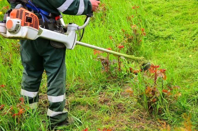 가을철에는추석 전후로 벌초나 성묘, 밤따기 등 농작물 수확, 등산 등이 늘어나면서 진드기나 들쥐 등이 옮기는 감염질환 발생률이 급증한다. 게티이미지뱅크 제공