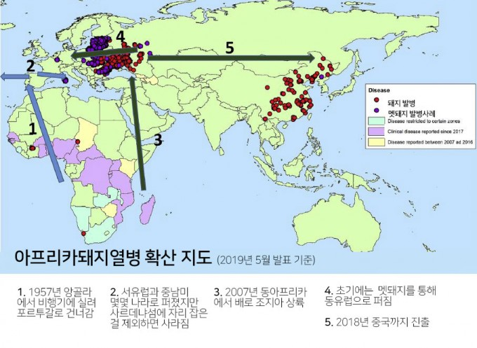 사하라 사막 이남 아프리카의 토착병인 아프리카돼지열병은 두 차례 아프리카를 벗어났다.올해 5월호에 발표된 논문에 실린 지도라서 한국은 아직 깨끗하다. '항바이러스 연구' 제공