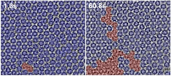 그래핀 위에 풀러린 분자들을 준비하여 단일 분자들의 움직임을 전자현미경으로 촬영한 결과이다. 풀러린 분자 결정(고체)은 파란 영역이고, 액체는 빨간 영역이다. 풀러린 분자 배열이 불규칙하게 바뀐 영역(빨간 영역)이 점차 확장되는 것을 관찰했다.IBS 제공