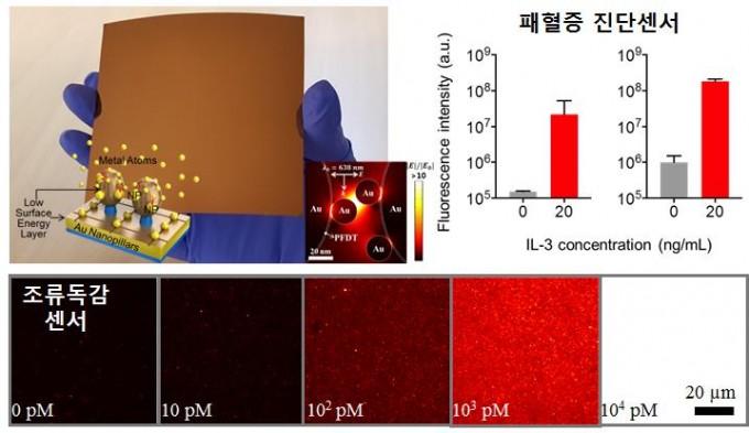 박성규 재료연구소 표면기술연구본부 나노표면연구실 책임연구원과 임형순 미국 하버드의대 연구팀이 패혈증이나 조류독감을 약 2시간 이내에 검출할 수 있는 3차원 바이오센서 칩을 개발했다. 재료연구소 제공