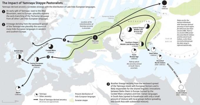 유럽 초원 유목민 얌나야 족의 이동경로(화살표)와 현대 인도유럽어의 분포범위(하늘색). 이번 연구로 얌나야족의 이동이 인도유럽어 성림에 기여했음이 밝혀졌다. 사이언스 제공