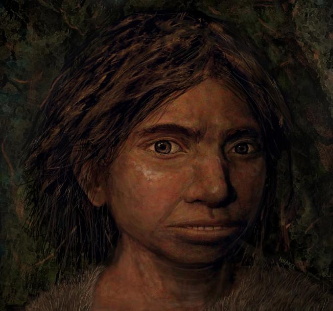 미궁에 빠져 있던 고인류 데니소바인의 얼굴을 게놈 데이터를 이용해 복원하는 데 성공했다. 현생인류 및 네안데르탈인보다 넓고 튼튼한 얼굴이 특징으로 나타났다. 히브리대 제공