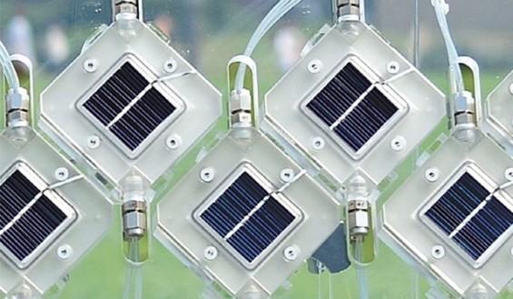 광합성 원리의 재발견… 햇빛 이용해 수소-알코올 만든다