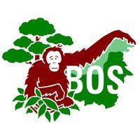 보르네오 오랑우탄 생존 재단(BOSF)