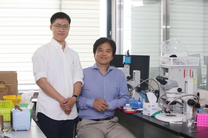 서성배 KAIST 생명과학과 교수(왼쪽)와 오양균 뉴욕대 세포생물학부 연구원 공동연구팀은 초파리 연구를 통해 뇌 속에서 체내 혈당에 직접 관여하는 포도당 감지 신경세포를 발견하고 구체적 원리를 밝혀내는 데 성공했다. KAIST 제공