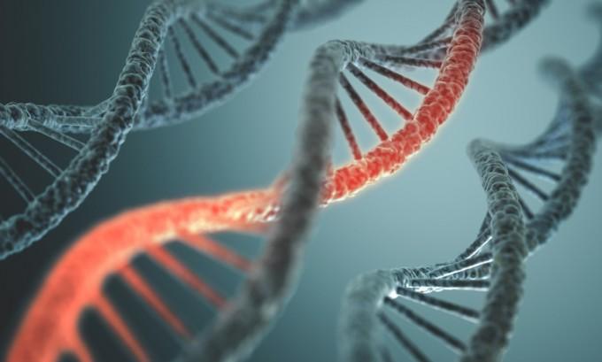 데이비드 리우 미국 하버드대 화학생물학과 교수 연구팀은 편집 정확도를 크게 끌어올린 차세대 크리스퍼 유전자 가위 '프라임'을 개발했다는 연구결과를 국제학술지 '네이처' 21일자에 발표했다. 게티이미지뱅크