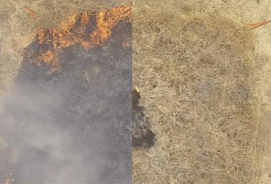 캘리포니아 지역 잔디에서 테스트하는 모습. 왼쪽은 잔디에 불이 붙은 직후의 모습이고 오른쪽은 하이드로겔을 이용한 모습. Eric Appel/스탠포드대