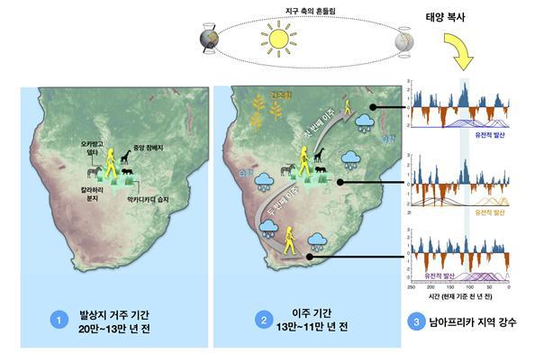 20만~13만 년 전까지, 현생인류는 칼라하리 지역의 대규모 습지에 살았다. 이 시기에는 발상지로부터 다른 지역으로 확산했다는 증거가 없다. 약 13만 년 전 지구 궤도와 태양 복사로 발상지의 북동쪽으로 강수와 식생이 증가해 먼저 북동쪽으로 이주가 가능했다(2), 약 2만 년 후, 녹지축이 남서쪽으로 개방되어 남아프리카 남서 해안쪽으로 이주가 가능했다. 한 그룹이 발상지에 남았고, 그들의 후손 일부(칼라하리 코이산)는 여전히 칼라하리에 살고 있다. 과학기술정보통신부 제공