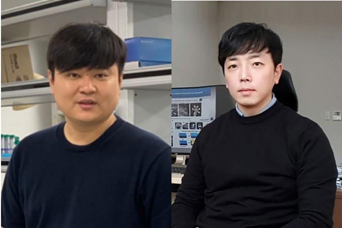 김장호(왼쪽) 전남대 지역바이소시스템공학과 교수와 정훈(오른쪽) 울산과학기술원(UNIST) 기계항공및원자력공학과 교수 연구팀은 줄기세포의 기능을 촉진시킬 수 있는 나노바늘구조 지지체를 개발했다. 한국연구재단 제공