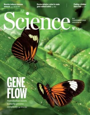 [표지로 읽는 과학] 서로 다른 나비가 닮아 보이는 이유 '유전자 흐름'