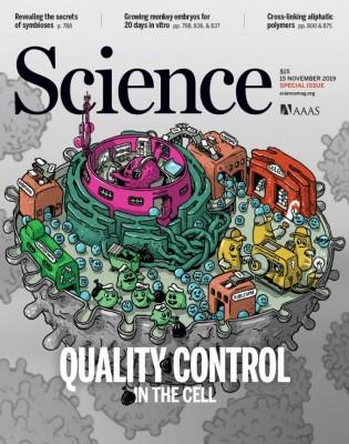 [표지로 읽는 과학] 세포의 '품질 관리' 다운증후군 기억력 저하 치료길 열까