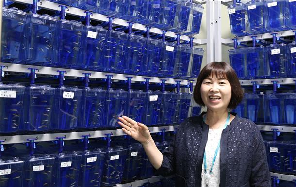 배명애 한국화학연구원 바이오기반기술연구센터장이 실험동물 대안으로 각광받고 있는 제브라피쉬의 특성에 대해 설명하고 있다. 한국화학연구원 제공.