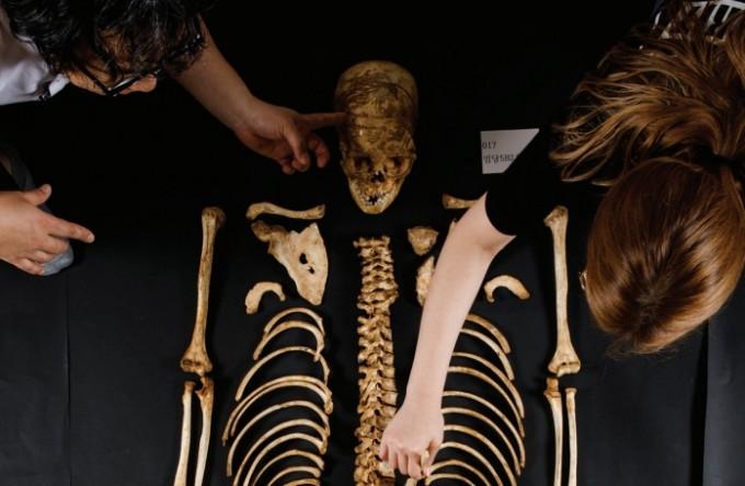 고고학자들이 유적에서 발견한 고인골을 분류하고 있다. 259구의 인골을 분류하는 데만 1년여에 가까운 시간이 걸렸다.