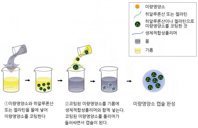 미량영양소 캡슐을 만드는 과정. 사이언스 중개의학 제공