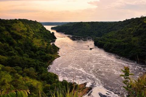 나일강. 위키피디아 제공