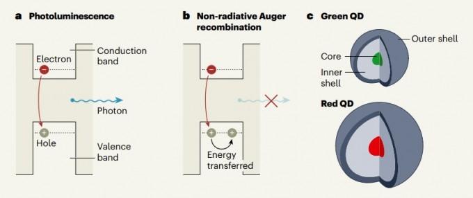 퀀텀닷은 일종의 반도체로, 전자가 있는 층에서 전자가 없는 층으로 전자가 이동하면서 빛을 낸다. 퀀텀닷 입자 크기를 달리 하면 색도 변한다. 삼성전자와 연세대 연구팀은 전자는 이동했는데 빛은 나오지 않는 현상을 줄여 효율을 높이고, 나아가 외부에서 직접 전자를 주입해 빛을 내게 하는 자발광 QLED 소자를 개발하는 데 성공해 지난해 11월 네이처에 발표했다. 네이처 제공