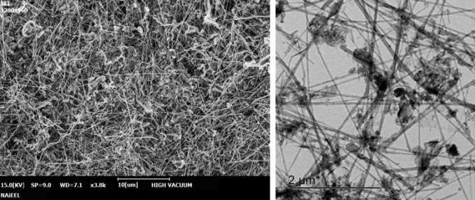 질화붕소 나노튜브를 전자현미경으로 촬영한 모습(왼쪽)과 투과전자현미경으로 촬영한 모습. 원자력연구원 제공.