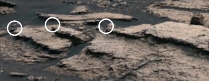 미국 캘리포니아공대 연구팀은 NASA의 탐사로봇 ′큐리오시티′가 보낸 데이터를 바탕으로 황산염의 존재를 확인했다. 사진은 큐리오시티가 화성에서 황산염을 발견한 지역(흰 원). 네이처 사이언스