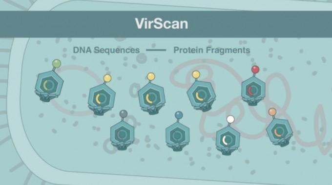 하버드대 의대팀이 개발한 항체 검출 기술 ′바이러스캔(VirScan)′ 기술을 설명한 영상을 캡쳐했다. 100개 이상의 다양한 항체를 동시에 해독해 어떤 병에 대한 항체인지 분석해 낸다. 하버드대 영상 캡쳐