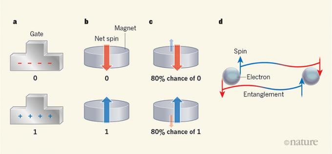컴퓨터에 쓰이는 네 가지 비트. 맨 왼쪽은 트랜지스터의 전자 비트로 게이트에 쌓인 전하에 따라 0 또는 1이 할당된다. 다음은 전형적인 자기 비트로 극성(자기 모멘트)에 따라 0 또는 1이 할당된다. 다음은 확률 자기 비트(피비트)로 극성이 확률적으로 바뀌면서 지정한는 값도 0과 1 사이를 오간다. 맨 오른쪽은 큐비트로 단일 전자의 두 스핀 상태가 동시에 존재하며(중첩) 옆 전자의 스핀 상태와 묶여 있다(얽힘). 네이처 제공