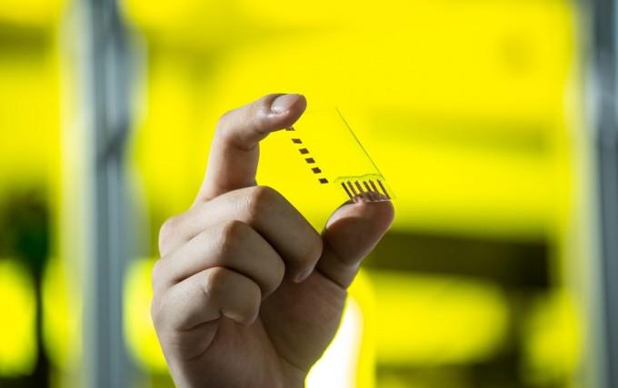 전도성 고분자로 패터닝된 투명 전극 소재의 모습. 동아사이언스 DB