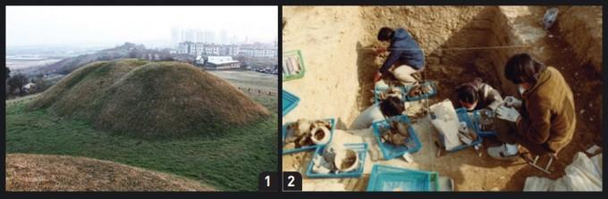 ① 임당동 유적 고분군 전경.  ② 1980년대 임당동 고분에서 유물을 수거하는 모습. 유물은 물론 발견된 고인골도 보존하여, 후대 연구에 도움을 주었다.