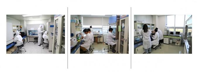 동물세포 배양실(왼쪽부터)과 유용효소 개발 실험실, 해양 천연물 분석실이 안전관리 우수연구실 인증을 획득했다. KIOST 제공