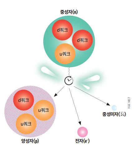 소립자의 일종인 u쿼크 1개와 d쿼크 2개로 이뤄진 중성자(n)는 일정 시간이 지나면 붕괴되기 시작한다. 중성자 내부에 있는 d쿼크 하나가 u쿼크로 바뀌면서 양성자 (p)가 되며, 전자(e-)와 중성미자 782keV(킬로전자볼트)의 빛 에너지가 생성된다. 과학동아DB (자료 NST)
