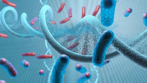 인간 면역계는 지금도 진화中