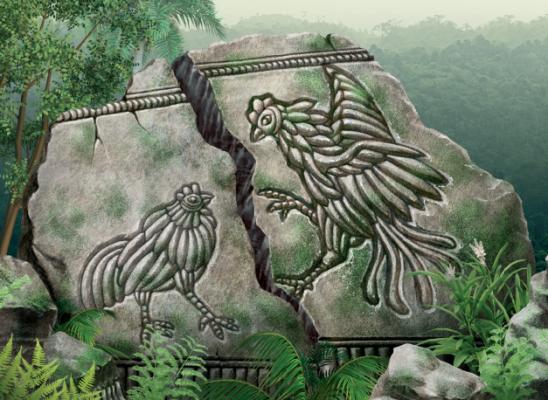 [주말 고고학산책] 최초로 닭을 키운 사람은 누구였을까