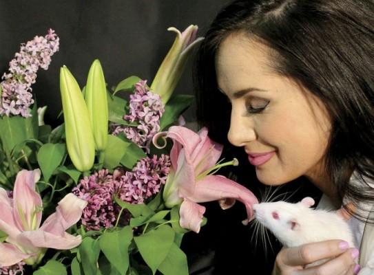 [강석기의 과학카페] 냄새와 페로몬에 대한 우리 뇌의 '극단적인 융통성'
