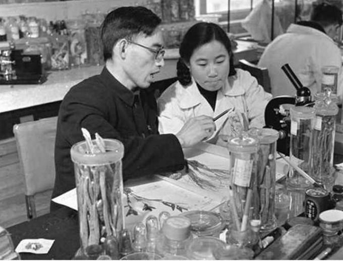 유럽 의학계를 비롯해 전 세계 학계에서 인정받고 있는 중국전통의학자 투유유. 위키미디어 제공