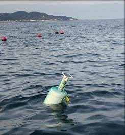 가두리 양식장 속 어류 360도 선명한 영상으로 본다