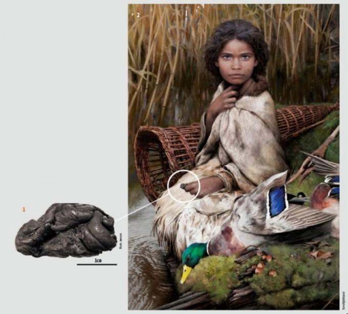 (덴마크 롤란섬에서 발견된 57덴마크 롤란섬에서 발견된 5700년 전 껌 화석(왼쪽). 껌 화석에서 추출한 DNA를 분석한 결과 껌 주인은 검은 피부와 흑갈색 머리카락, 푸른색의 눈동자를 가진 여성으로 추정됐다. 사진은 이 여성의 상상도.