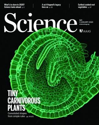[표지로 읽는 과학] 수생 식충식물의 사냥비결은 끝이 말리게 진화한 주머니