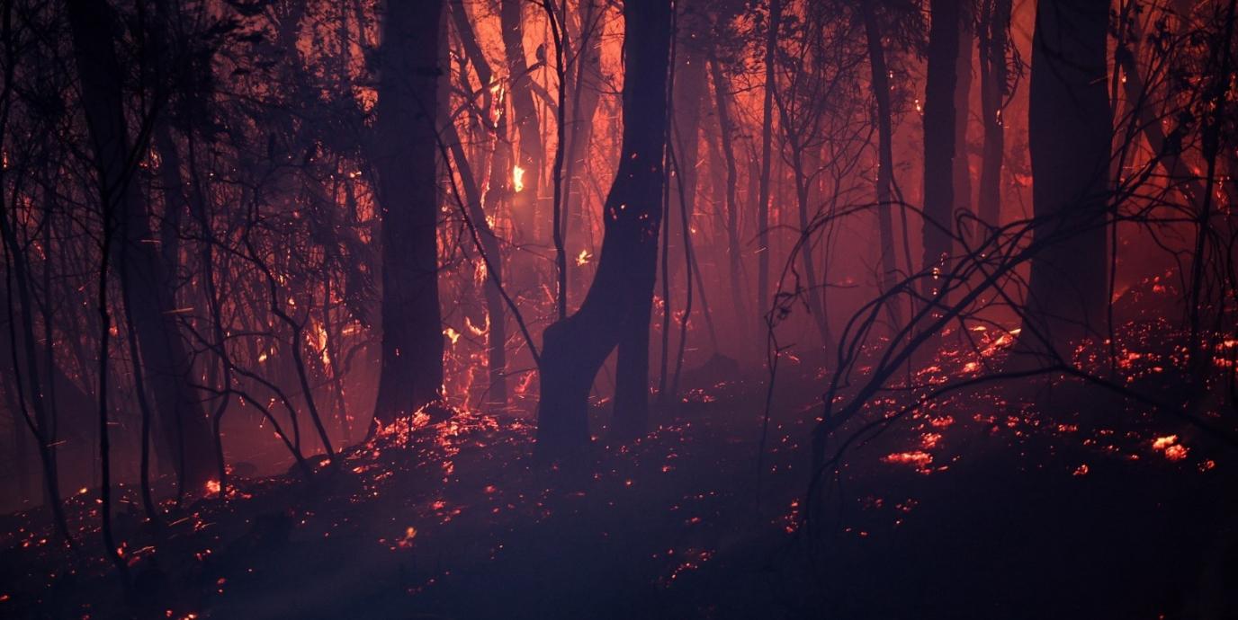 2019년 10월 발생한 호주 산불이 좀처럼 잡히지 않고, 오히려 확산이 되고 있다. EPA/연합뉴스 제공