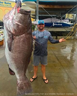 50살, 160kg 대형 물고기 잡혀