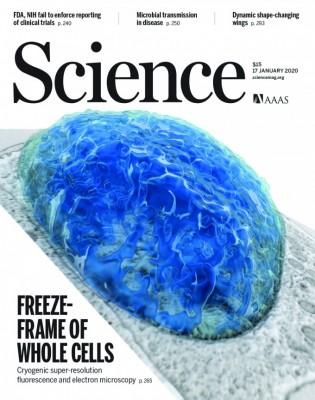 [표지로 읽는 과학]세포를 완전한 3D로 본다