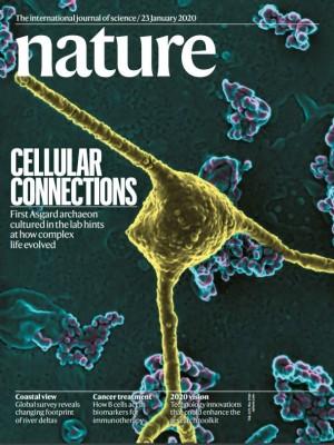 [표지로 읽는 과학]진핵생물 진화 밝힐 고세균 배양 성공하다